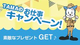 TAMAのお仕事キャンペーン!